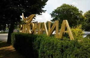 alama-matuita-litere-logo